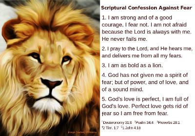 5 x 3.5 Lion, Fear